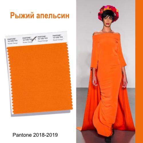 Рыжий апельси н.jpg